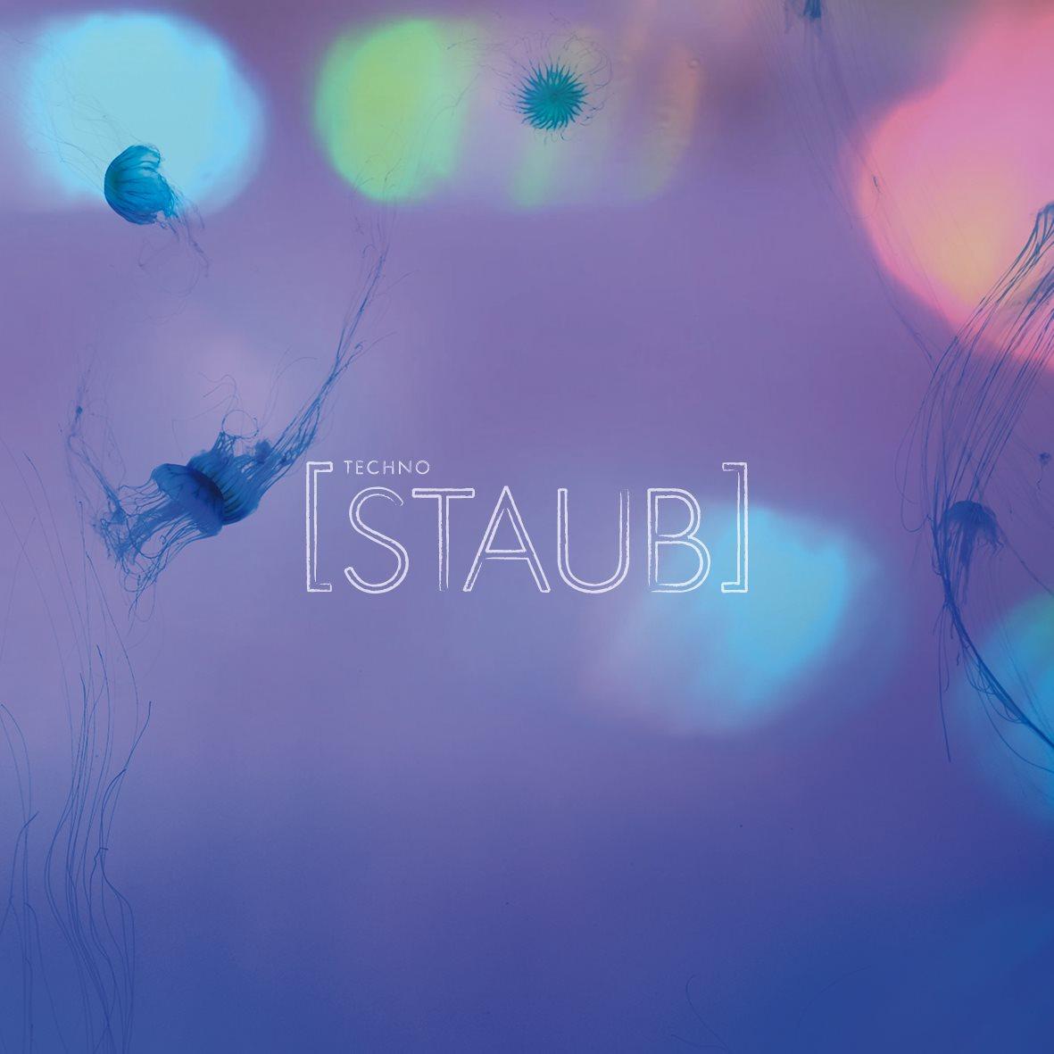 staub20150725